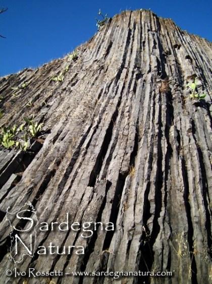 Ph. Sardegna Natura. Basalti colonnari